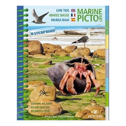 Guide D'identification Pictolife Marée Basse - Atlantique Est