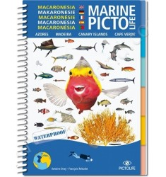 Guide D'identification Pictolife Macaronésie