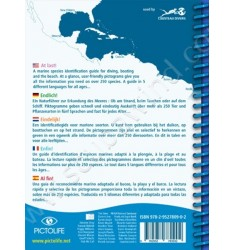 Guide d'identification Pictolife Atlantique Tropical