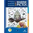 Guide d'identification Pictolife Méditerranée