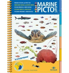 Guide d'identification Pictolife Mer Rouge - Ocean Indien