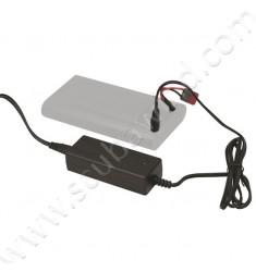 Chargeur pour Batterie 60000
