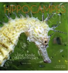 Hippocampes : une famile d'excentriques