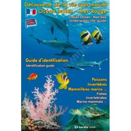Dépliant Découverte de la vie sous-marine Mer Rouge