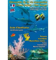 Dépliant : Espèces en Mer Rouge